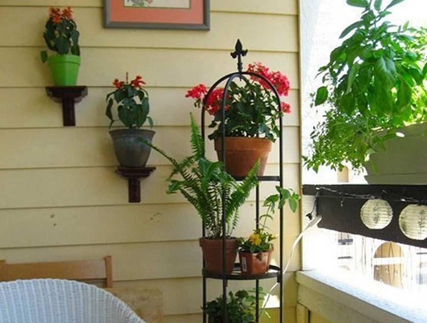 Trang trí ban công bằng cây và hoa